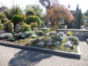 Gärtnergepflegtes Grabfeld, Teilansicht E1